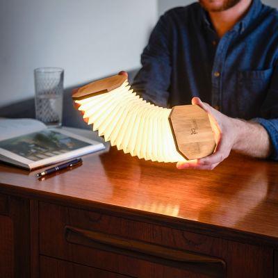 Gingko harmonika-lampe