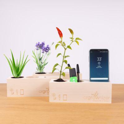 Orgrownizer - Organizer til skrivebordet med plante