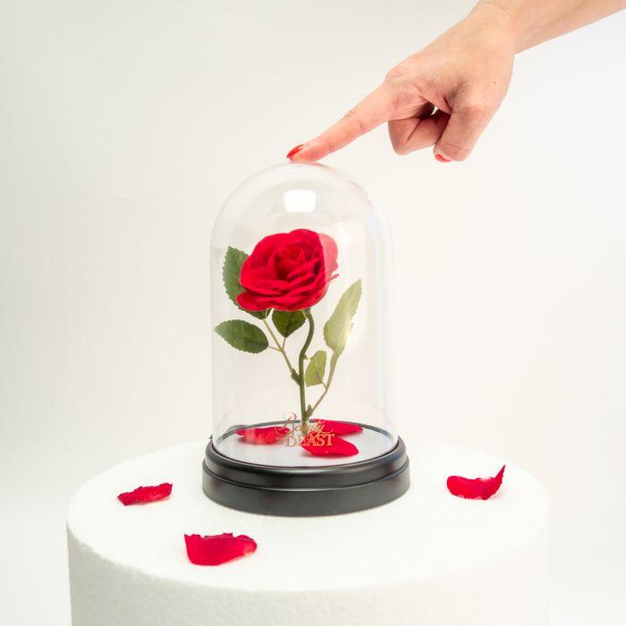 Skønheden og udyret: Fortryllede Roser Lampe