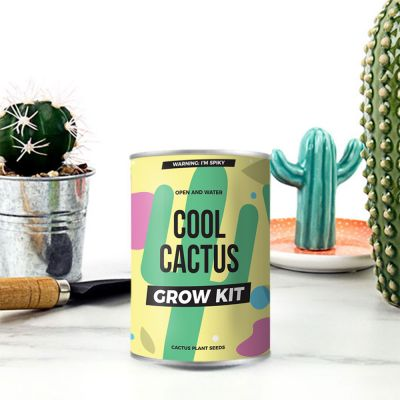 Kaktus på dåse