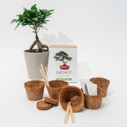 Grow It Bonsai-træer