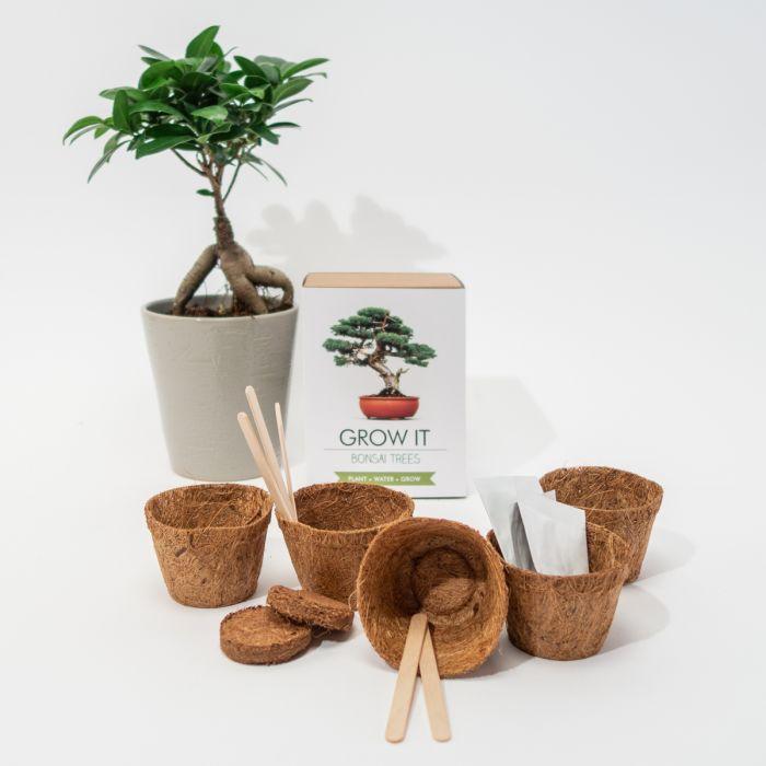 Grow It Bonsai-træer
