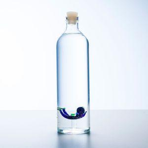 Vandflaske med dykker