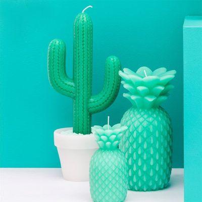 Mors dag gaver - Kaktus lys