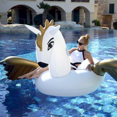 Strand & hav - Oppustelig Pegasus