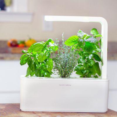 Gaver til par - Click & Grow Smarter urtehave til indendørs