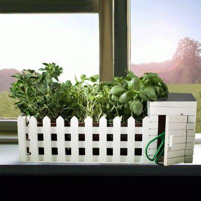 Gave til forældre - En mini-urtehave til indendørs brug