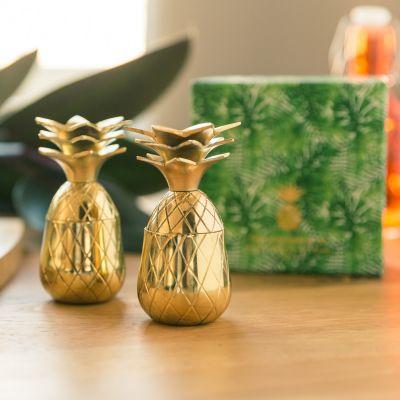 Kopper og glas - Ananas shotglas i metal