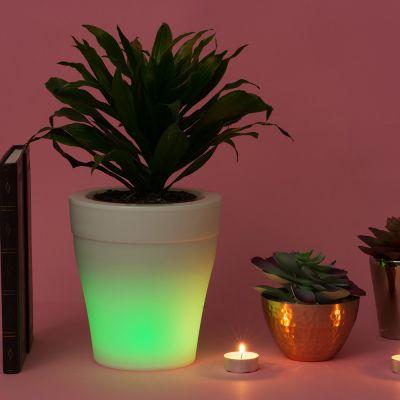 Gadgets til hjemmet - Oplyst potteplante med farveændring
