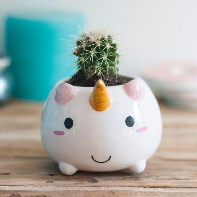 Udsalg - Enhjørninge Mini Blomsterkrukke