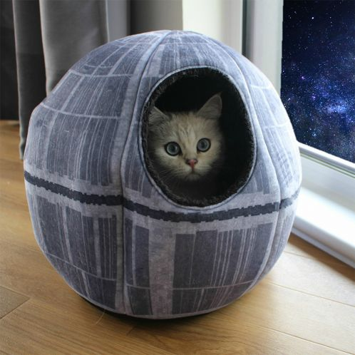 Star Wars Kathule